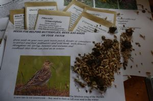 A mixed seed collection for pollinators and winter birds